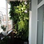 Фото 5 обустройство зимнего сада на балконе или лоджии