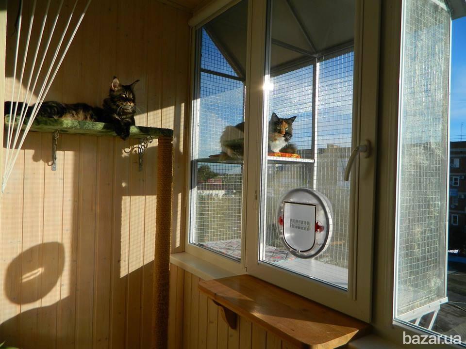 место для животных на балконе