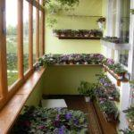 Фото 4 обустройство зимнего сада на балконе или лоджии