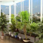 Фото 9 обустройство зимнего сада на балконе или лоджии