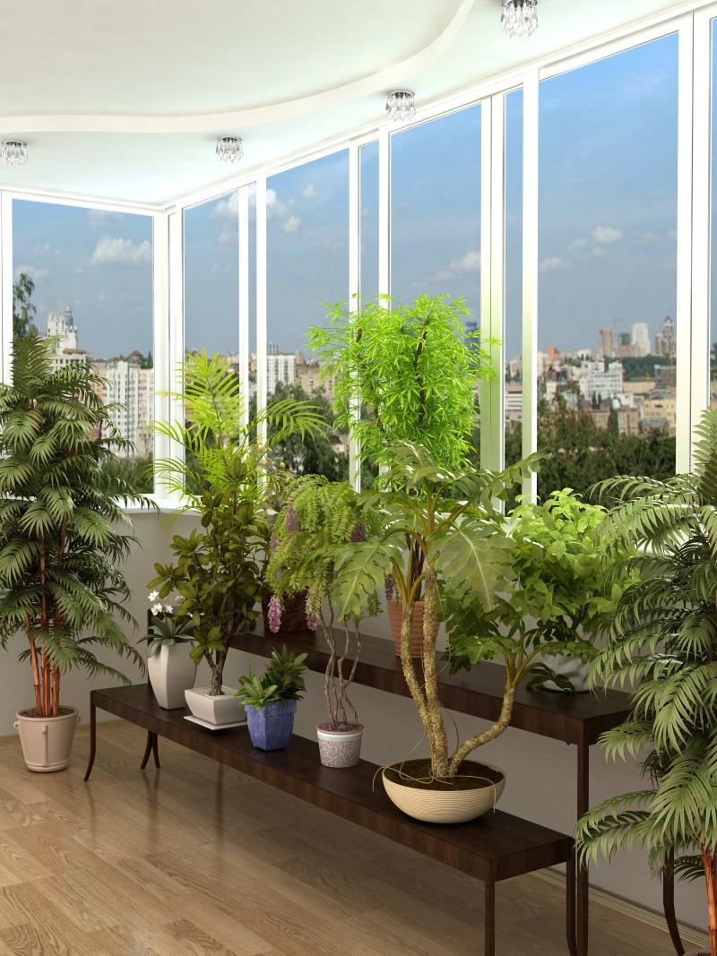 дизайн зимнего сада на балконе