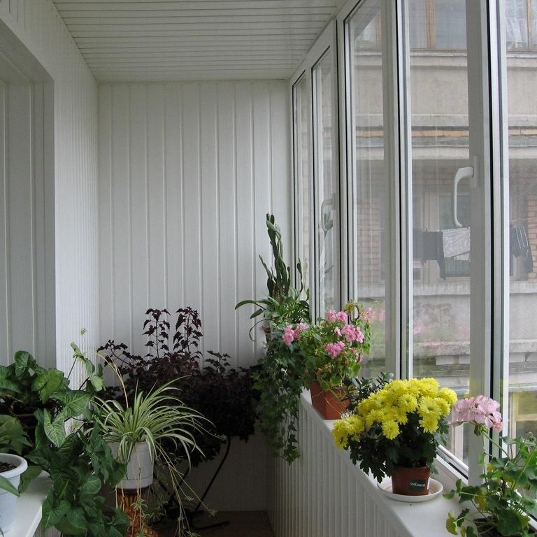 зимний сад на балконе своими руками фото явление пытались