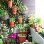 размещение горшочков для растений на лоджии