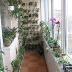 обустройство зимнего сада на балконе