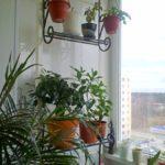 Фото 11 что можно делать с пожарной лестницей и люком на балконе