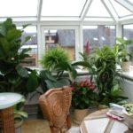 Фото 20 обустройство зимнего сада на балконе или лоджии