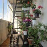 Фото17 что можно делать с пожарной лестницей и люком на балконе